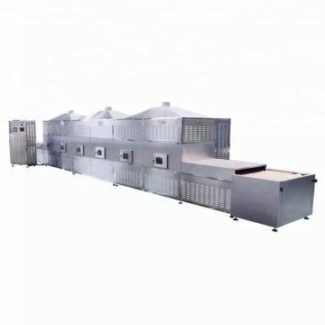 Tunnel Microwave Baking and Sterilizing Equipment Pine Nuts Hazelnuts Pistachios