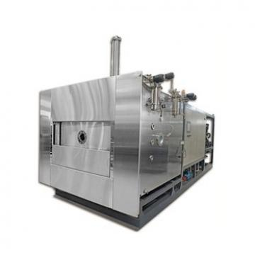 SUS Stainless Steel Hot Air Fruit and Vegetable Continuous Drying Machine