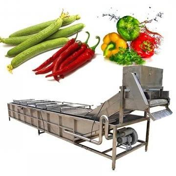 Fully Automatic 4 Sets Dishwasher Fruit and Vegetable Washing Machine