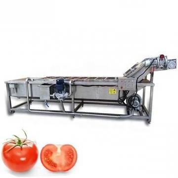 Industrial Fresh Vegetable Fruits Cleaning Drying Processing Dry Dates Washing Machine