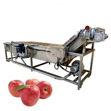 Automatic Continuous Working Brush Roller/Bubble Washing Machine for Fruit&Vegetable