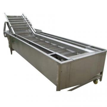 Air-Blowing Type/Bubble Surfing Washing Machine for Fruit and Vegetable Processing Line