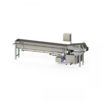 Commercial 800kg/H Automatic Fruit Washer Vegetable Washing Blueberry Cleaning Machine